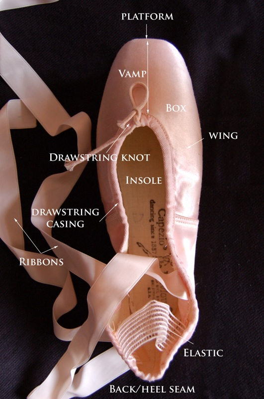 Anatomy of the Ballet Pointe Shoe - a major turning pointe in history